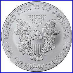 2014 1 Troy Oz American Silver Eagle 5 Rolls (100 coins) SKU30626