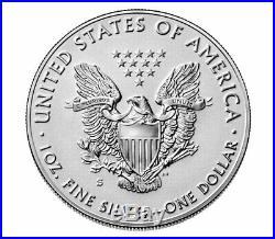 2019 S 1 oz Silver American Eagle Enhanced Reverse Proof Gem $1 OGP SKU60027