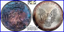 Blueberry Toned 2015 American Silver Eagle PCGS MS68 Vibrant Blueberry Tone